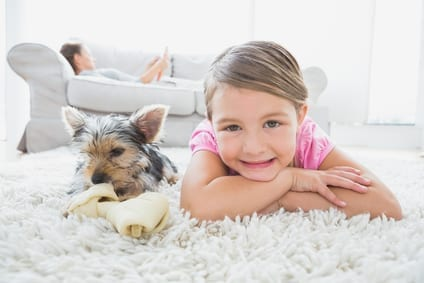 Steps To Help With Your Carpet Cleaning Routine